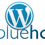 Bluehost with WP