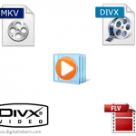 MKV, FLV, XVID, DIVX